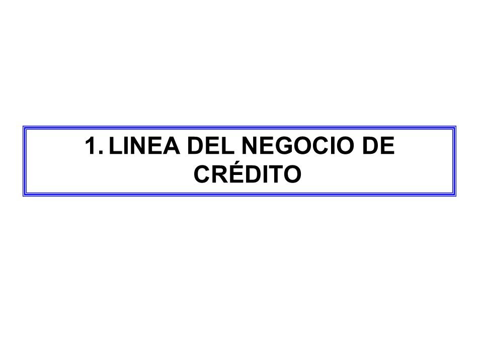 1.LINEA DEL NEGOCIO DE CRÉDITO