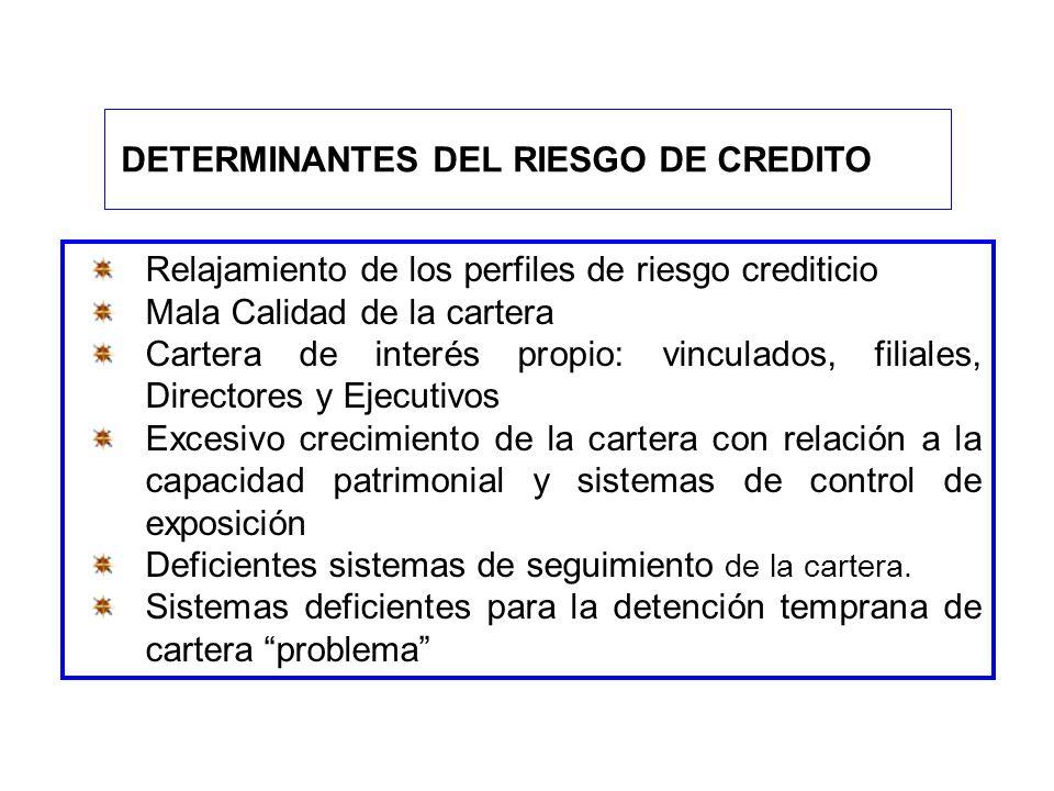 Relajamiento de los perfiles de riesgo crediticio Mala Calidad de la cartera Cartera de interés propio: vinculados, filiales, Directores y Ejecutivos