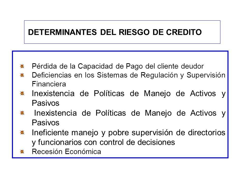 Pérdida de la Capacidad de Pago del cliente deudor Deficiencias en los Sistemas de Regulación y Supervisión Financiera Inexistencia de Políticas de Ma