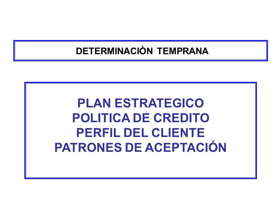 DETERMINACIÒN TEMPRANA PLAN ESTRATEGICO POLITICA DE CREDITO PERFIL DEL CLIENTE PATRONES DE ACEPTACIÓN