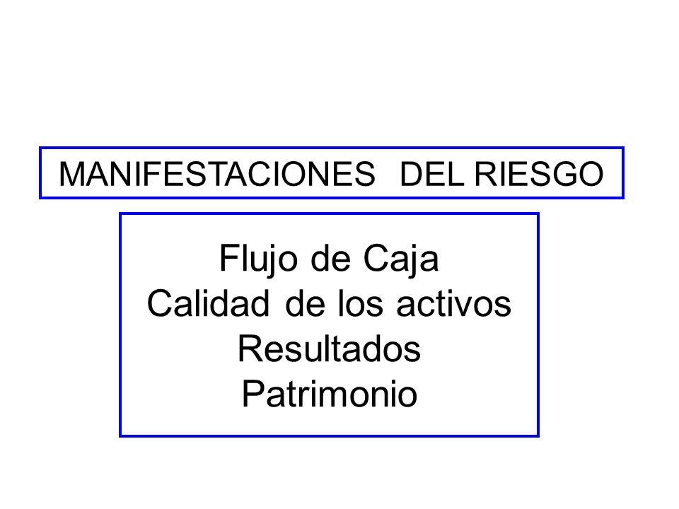 MANIFESTACIONES DEL RIESGO Flujo de Caja Calidad de los activos Resultados Patrimonio