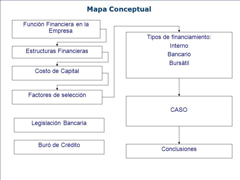 30 Mapa Conceptual Función Financiera en la Empresa Costo de Capital Estructuras Financieras Factores de selección Tipos de financiamiento: Interno Ba
