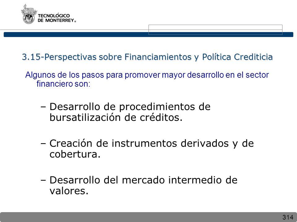 314 3.15-Perspectivas sobre Financiamientos y Política Crediticia Algunos de los pasos para promover mayor desarrollo en el sector financiero son: –Desarrollo de procedimientos de bursatilización de créditos.
