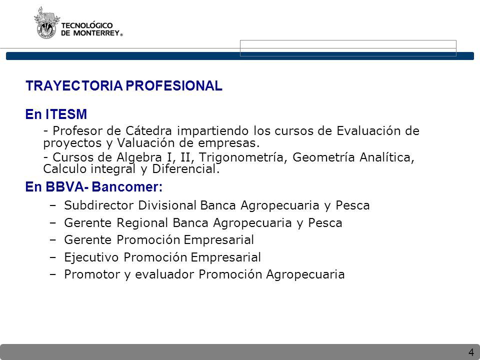 4 TRAYECTORIA PROFESIONAL En ITESM - Profesor de Cátedra impartiendo los cursos de Evaluación de proyectos y Valuación de empresas. - Cursos de Algebr