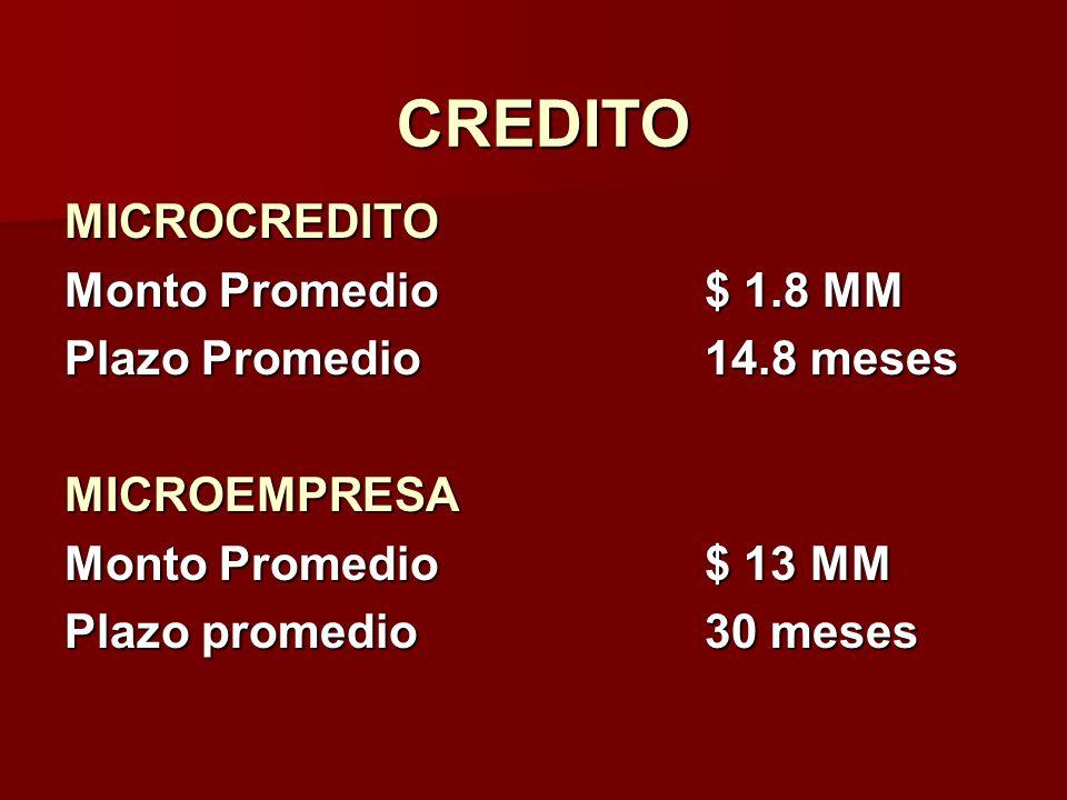 CREDITO MICROCREDITO Monto Promedio$ 1.8 MM Plazo Promedio14.8 meses MICROEMPRESA Monto Promedio$ 13 MM Plazo promedio30 meses