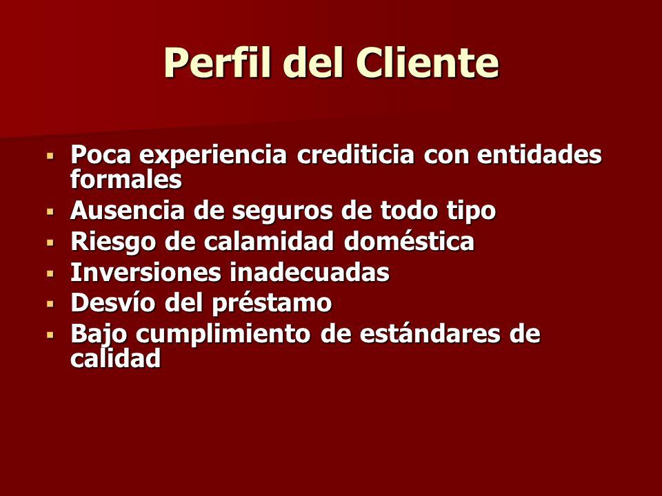 Perfil del Cliente Poca experiencia crediticia con entidades formales Poca experiencia crediticia con entidades formales Ausencia de seguros de todo t