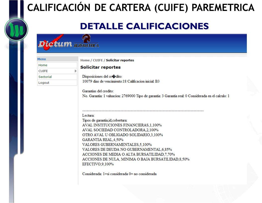 DETALLE CALIFICACIONES CALIFICACIÓN DE CARTERA (CUIFE) PAREMETRICA