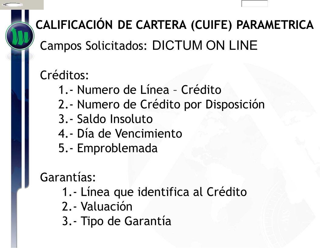 CALIFICACIÓN DE CARTERA (CUIFE) PARAMETRICA Campos Solicitados: DICTUM ON LINE Créditos: 1.- Numero de Línea – Crédito 2.- Numero de Crédito por Dispo