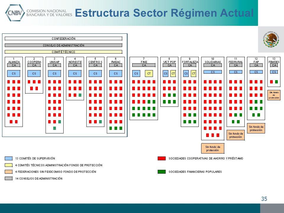 35 Estructura Sector Régimen Actual
