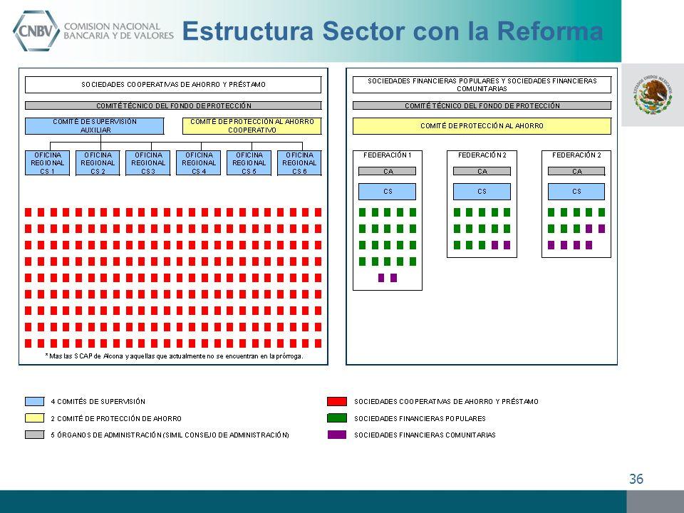 36 Estructura Sector con la Reforma