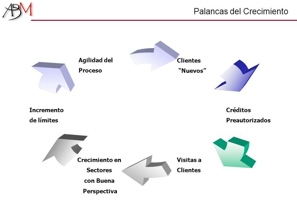 Palancas del Crecimiento Clientes Nuevos Créditos Preautorizados Visitas a Clientes Crecimiento en Sectores con Buena Perspectiva Incremento de límite