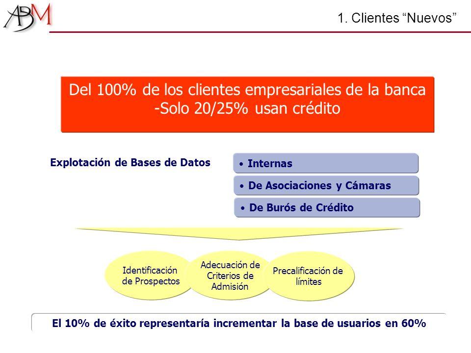 1. Clientes Nuevos Identificación de Prospectos Internas Explotación de Bases de Datos De Asociaciones y Cámaras De Burós de Crédito Adecuación de Cri