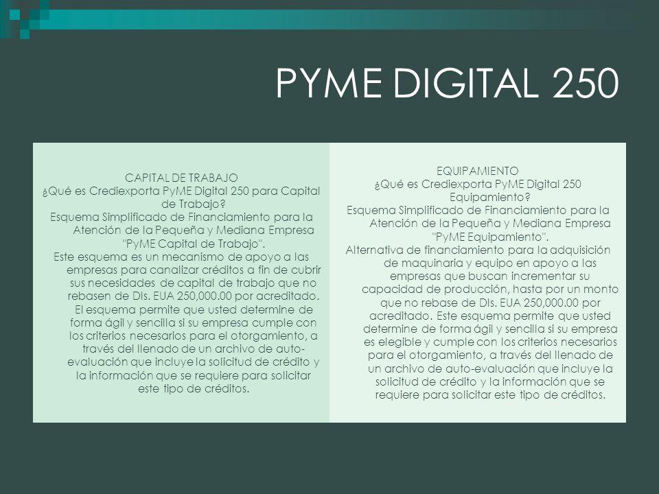 PYME DIGITAL 250 CAPITAL DE TRABAJO ¿Qué es Crediexporta PyME Digital 250 para Capital de Trabajo.