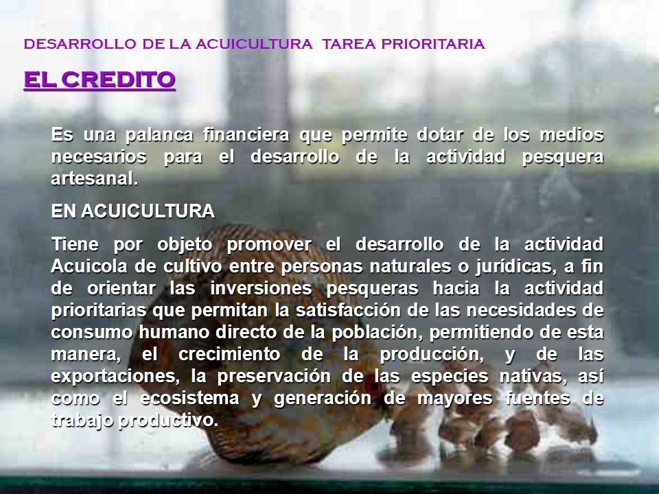 APOYO FINANCIERO DEL FONDEPES EL CRÉDITO DEL FONDEPES DESARROLLO PRIORITARIO DEL ACTIVIDAD PESQUERA ARTESANAL, ASI COMO DE LA ACUICULTURA SU CARACTERISTICA CONTEMPLA EL CONTEXTO SOCIAL SE INICIA CON LA PRESENTACIÓN DE LA SOLICITUD Y CULMINA CON LA CANCELACIÓN DEL CRÉDITO COLOCACIONESRECUPERACIONES
