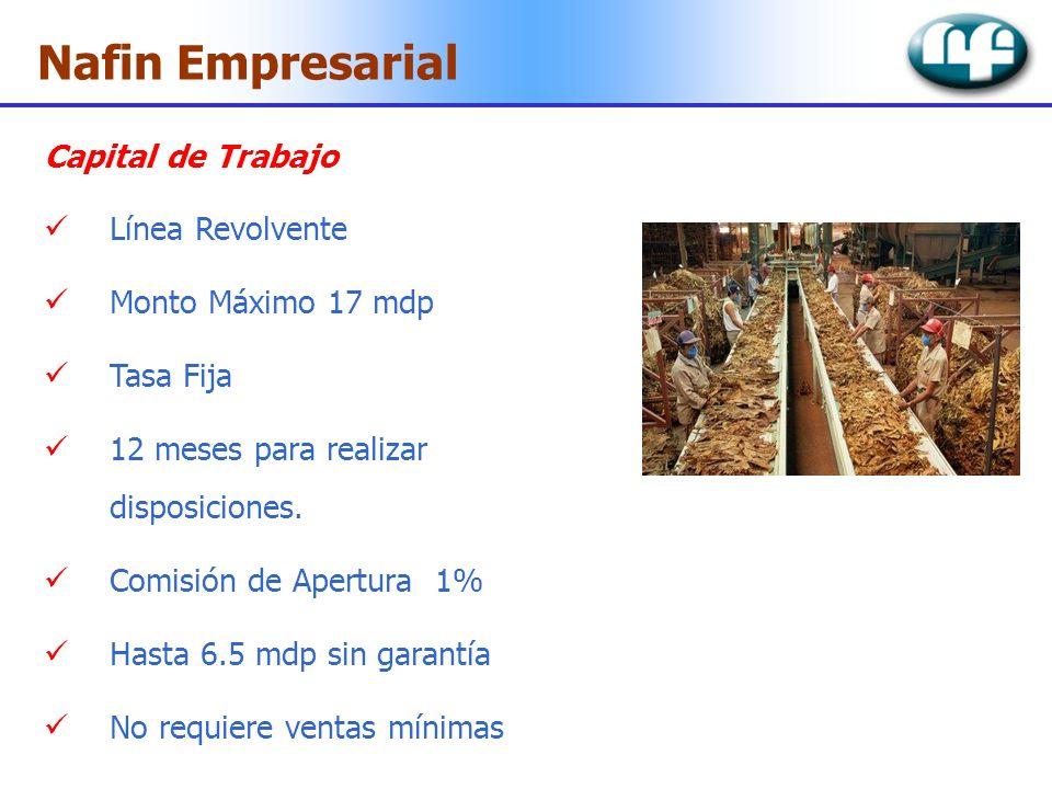 Nafin Empresarial Capital de Trabajo Línea Revolvente Monto Máximo 17 mdp Tasa Fija 12 meses para realizar disposiciones. Comisión de Apertura 1% Hast