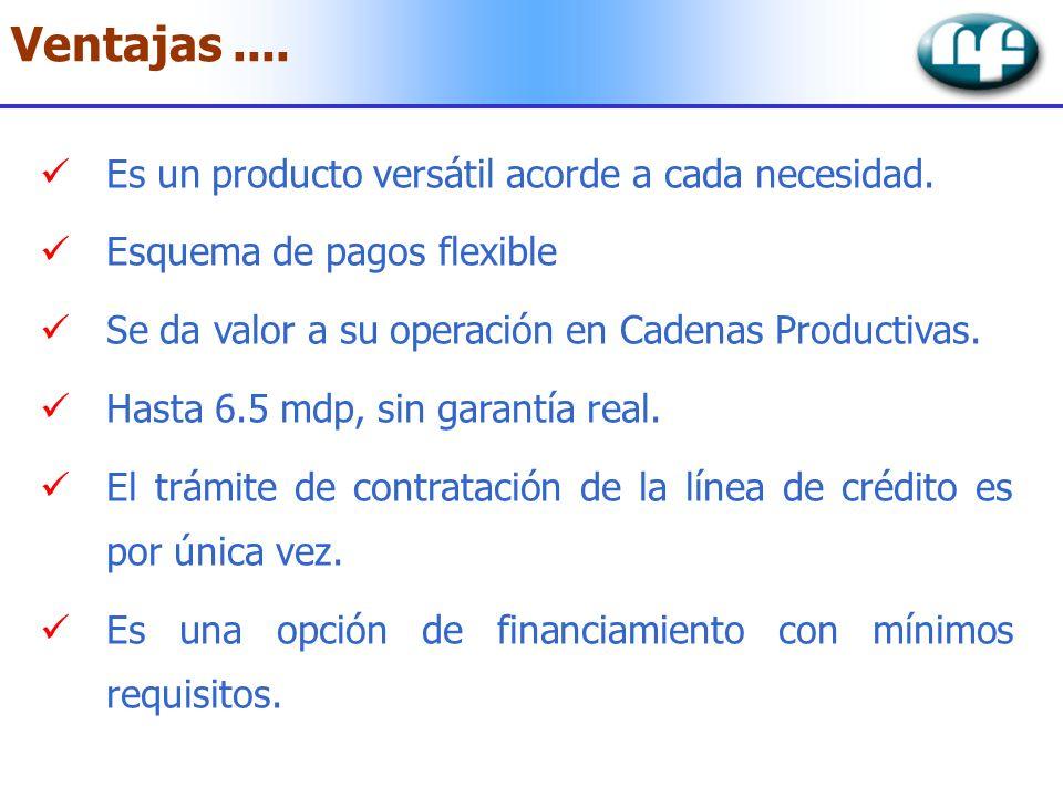 Ventajas.... Es un producto versátil acorde a cada necesidad. Esquema de pagos flexible Se da valor a su operación en Cadenas Productivas. Hasta 6.5 m