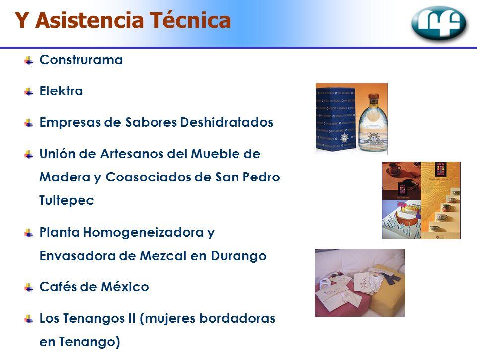 Y Asistencia Técnica Construrama Elektra Empresas de Sabores Deshidratados Unión de Artesanos del Mueble de Madera y Coasociados de San Pedro Tultepec