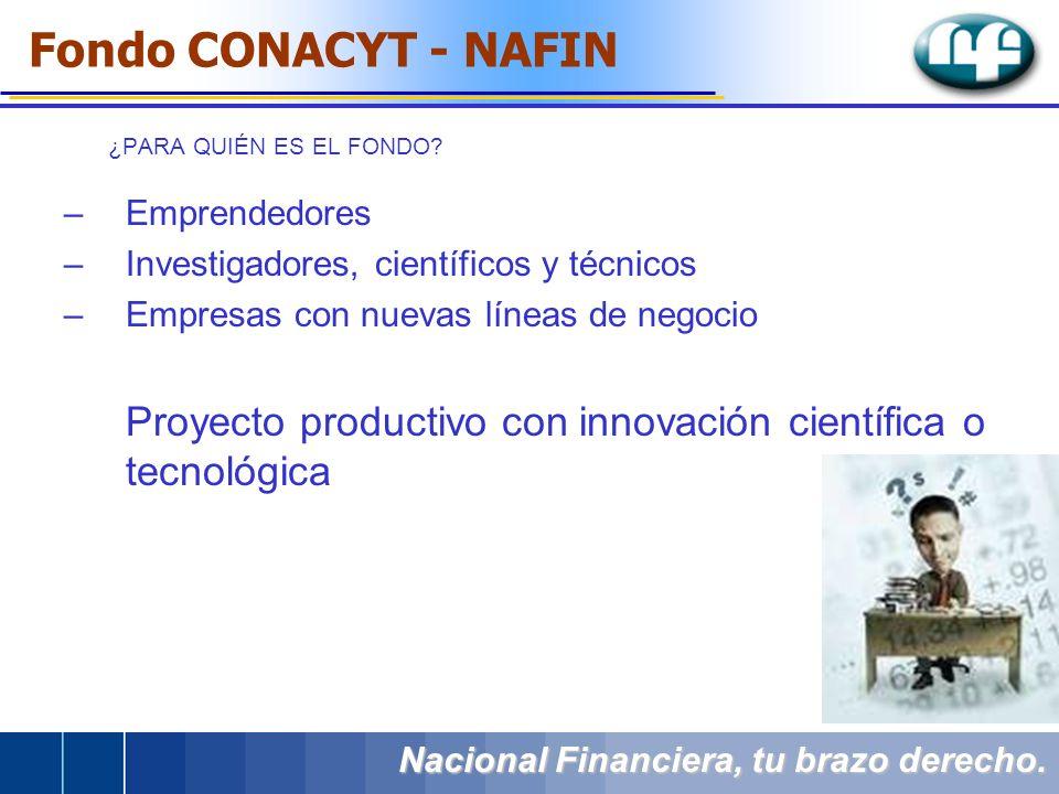 –Emprendedores –Investigadores, científicos y técnicos –Empresas con nuevas líneas de negocio Proyecto productivo con innovación científica o tecnológ
