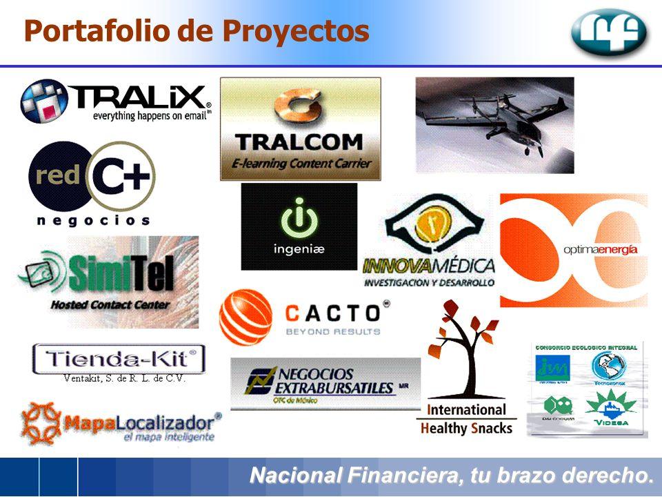 Nacional Financiera, tu brazo derecho. Portafolio de Proyectos