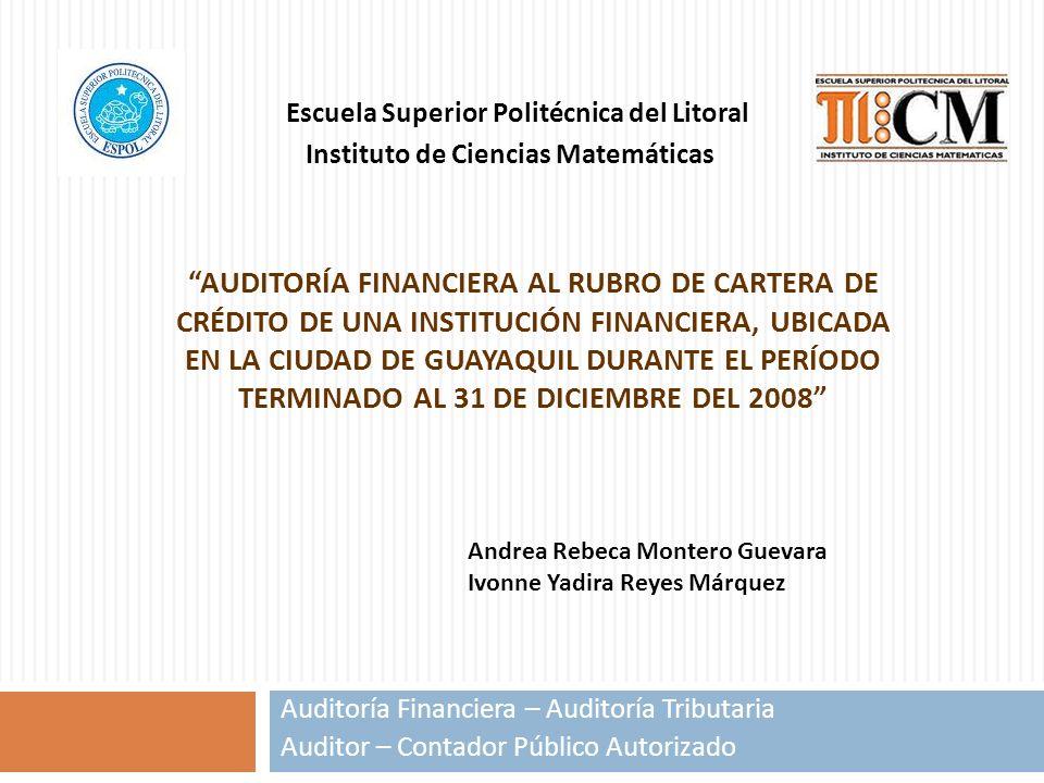 AUDITORÍA FINANCIERA AL RUBRO DE CARTERA DE CRÉDITO DE UNA INSTITUCIÓN FINANCIERA, UBICADA EN LA CIUDAD DE GUAYAQUIL DURANTE EL PERÍODO TERMINADO AL 3