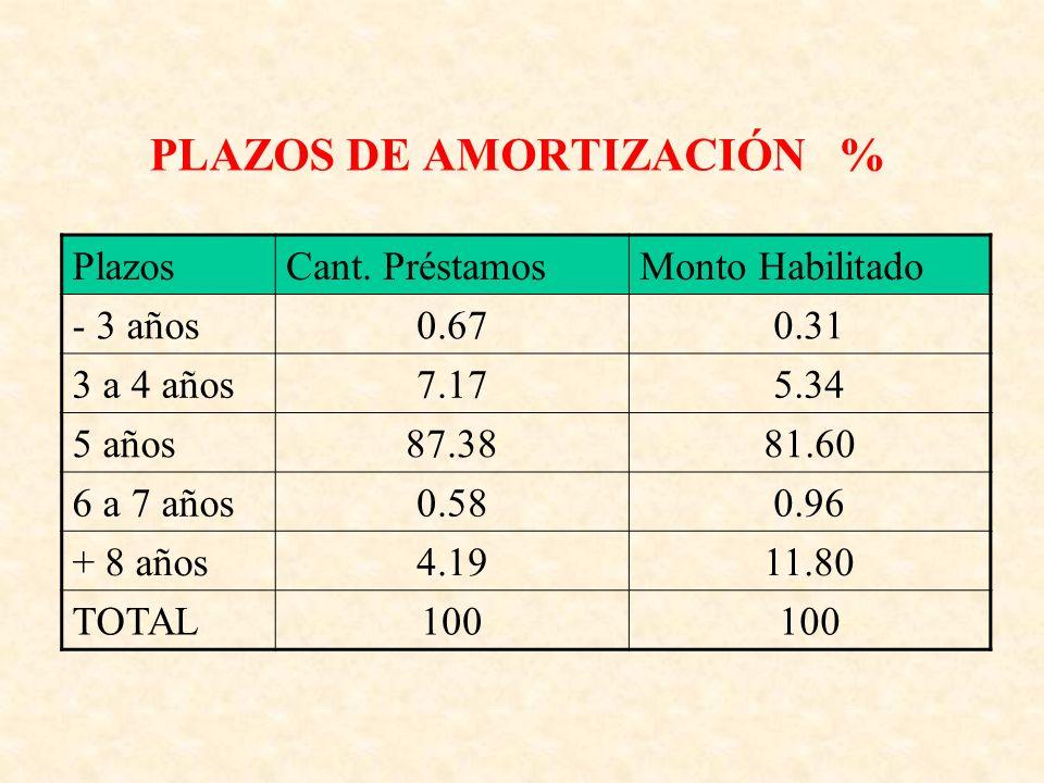 PLAZOS DE AMORTIZACIÓN % PlazosCant.