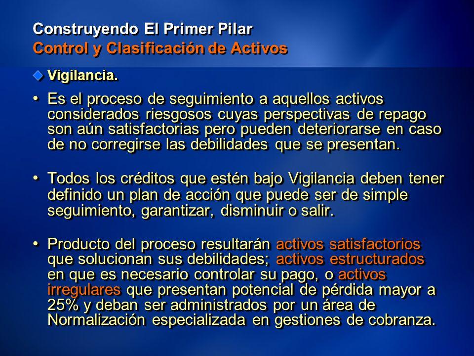 42 Construyendo El Primer Pilar Control y Clasificación de Activos Vigilancia.
