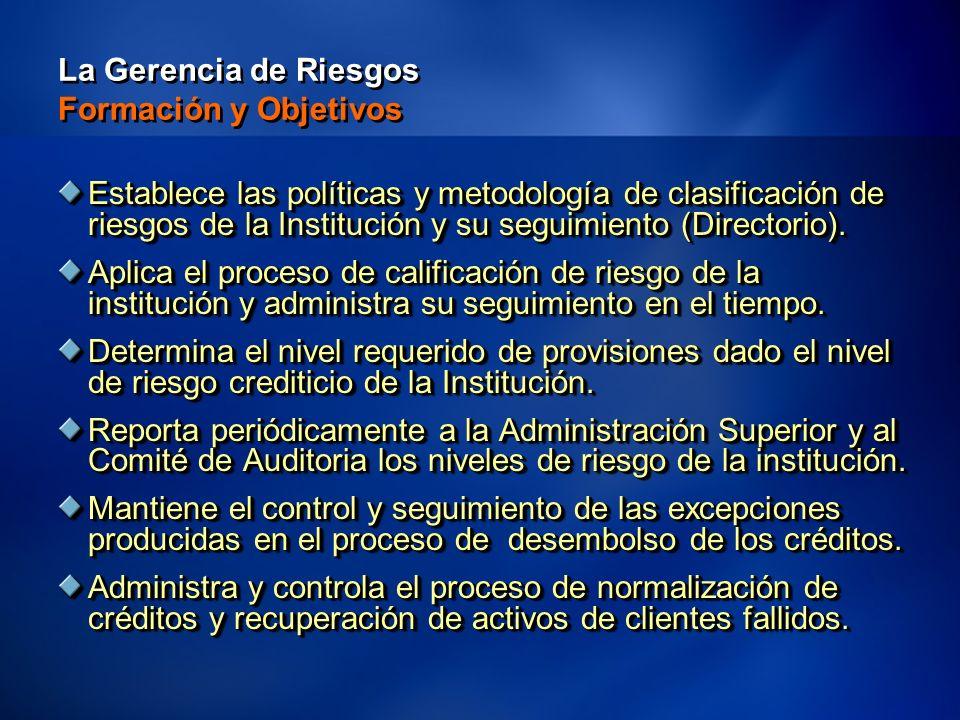 99 La Gerencia de Riesgos Formación y Objetivos Establece las políticas y metodología de clasificación de riesgos de la Institución y su seguimiento (Directorio).