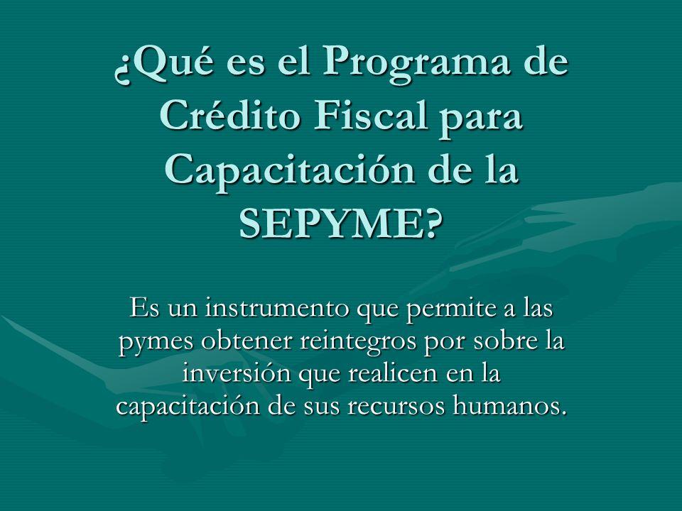 ¿Qué es el Programa de Crédito Fiscal para Capacitación de la SEPYME.