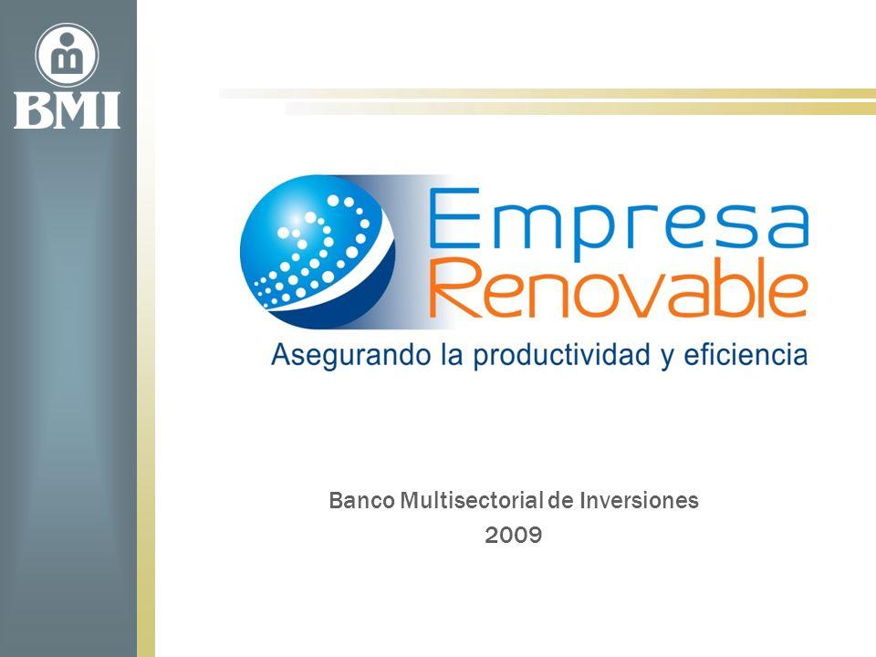 www.bmi.gob.sv Instituciones que participan en el FAT 2009-2011 FIAGROCENTROMYPECNPML Función: 1.Promover y admón las AT en Energía renovable 2.