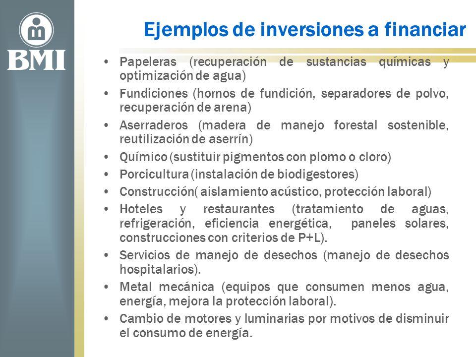 Ejemplos de inversiones a financiar Papeleras (recuperación de sustancias químicas y optimización de agua) Fundiciones (hornos de fundición, separador