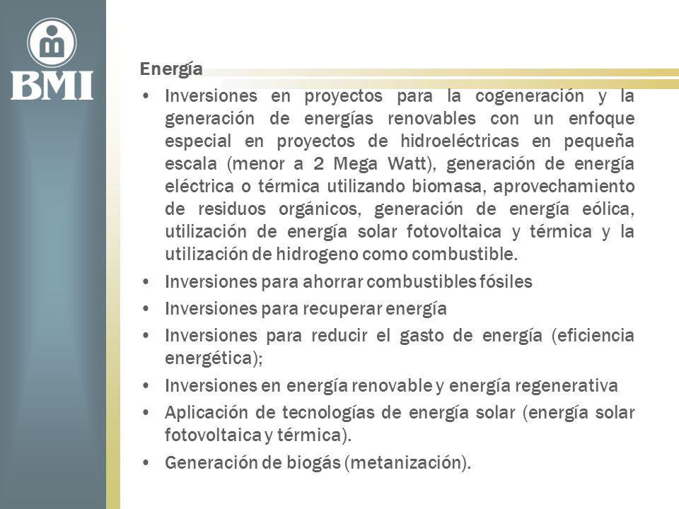 Energía Inversiones en proyectos para la cogeneración y la generación de energías renovables con un enfoque especial en proyectos de hidroeléctricas e