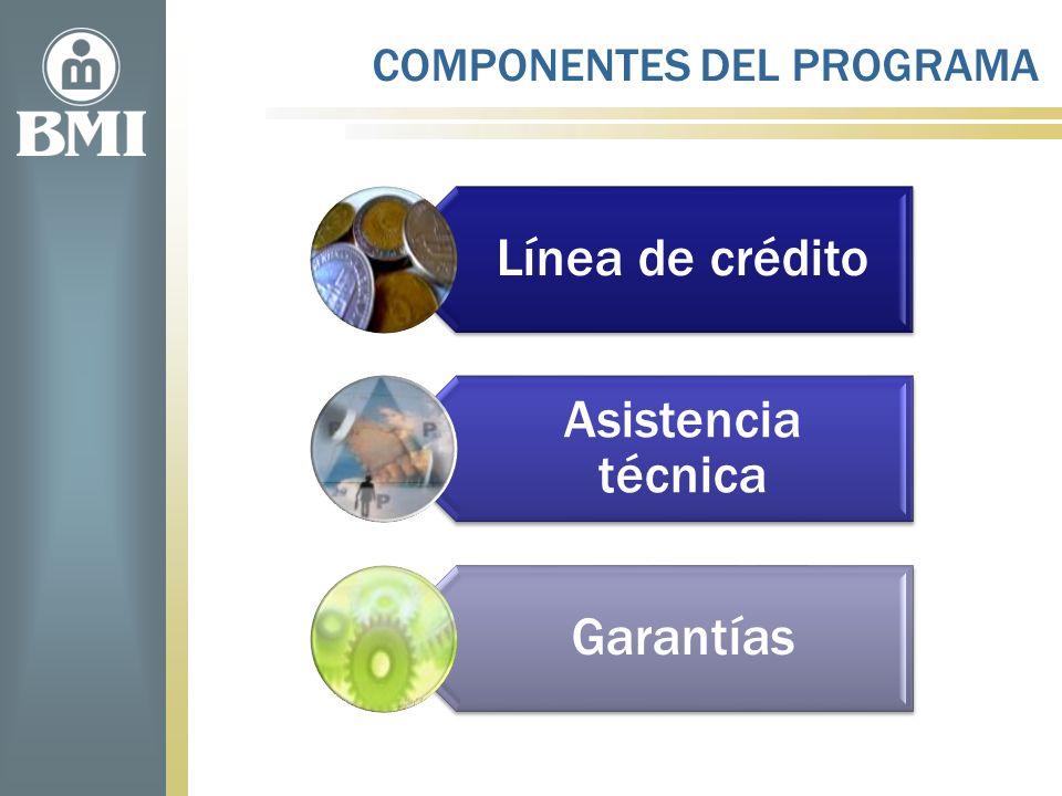 COMPONENTES DEL PROGRAMA Línea de crédito Asistencia técnica Garantías