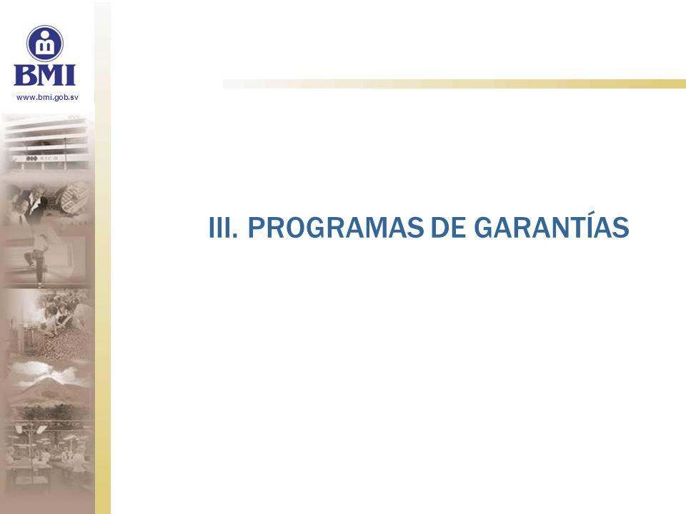 www.bmi.gob.sv III. PROGRAMAS DE GARANTÍAS
