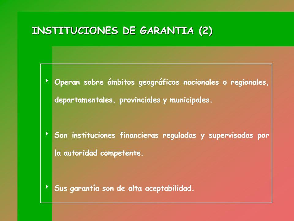 Desarrollan sus actividades mediante cualquier vehículo legal permitido por el derecho (Ej. FOGABA y Sociedades de Garantías Recíprocas en Argentina,