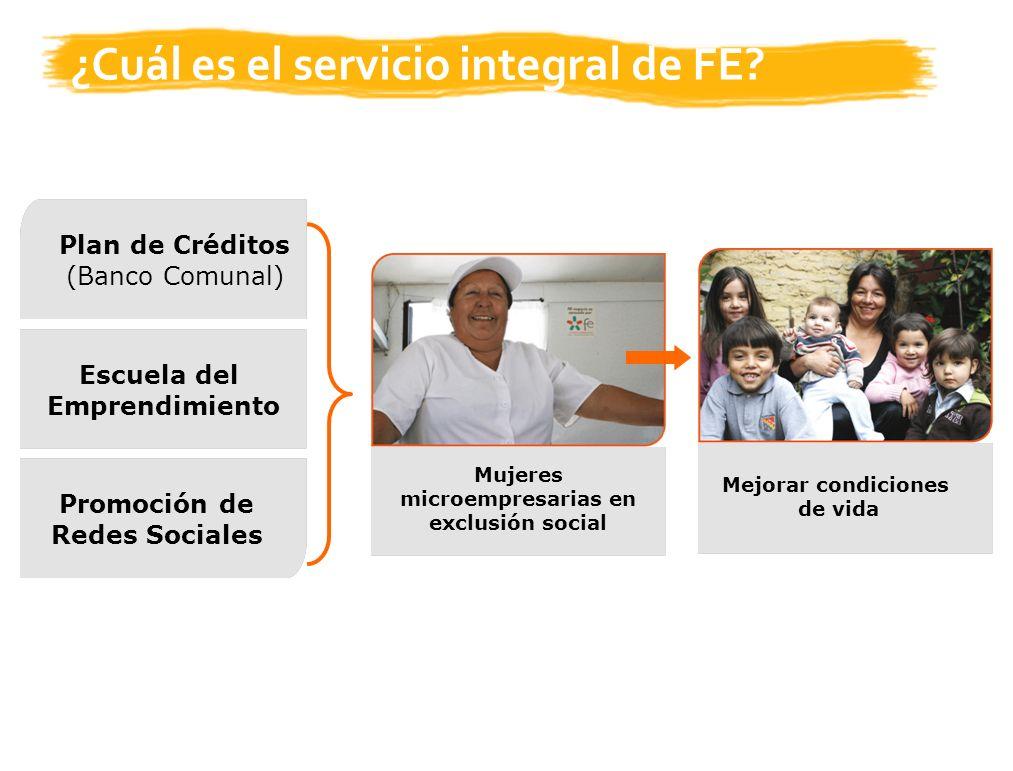 ¿Cuál es el servicio integral de FE.