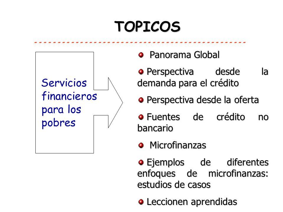 TOPICOS Servicios financieros para los pobres Panorama Global Perspectiva desde la demanda para el crédito Perspectiva desde la demanda para el crédit