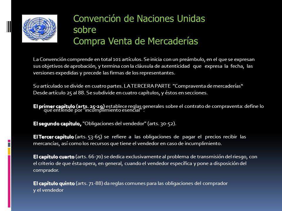 La Convención comprende en total 101 artículos. Se inicia con un preámbulo, en el que se expresan sus objetivos de aprobación, y termina con la cláusu