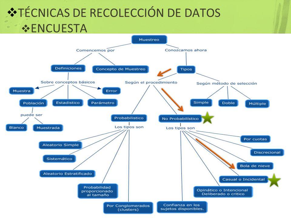 TÉCNICAS DE RECOLECCIÓN DE DATOS ENCUESTA