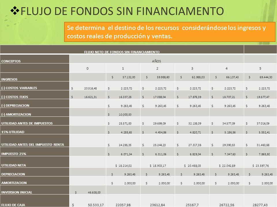 FLUJO DE FONDOS SIN FINANCIAMENTO Se determina el destino de los recursos considerándose los ingresos y costos reales de producción y ventas. FLUJO NE