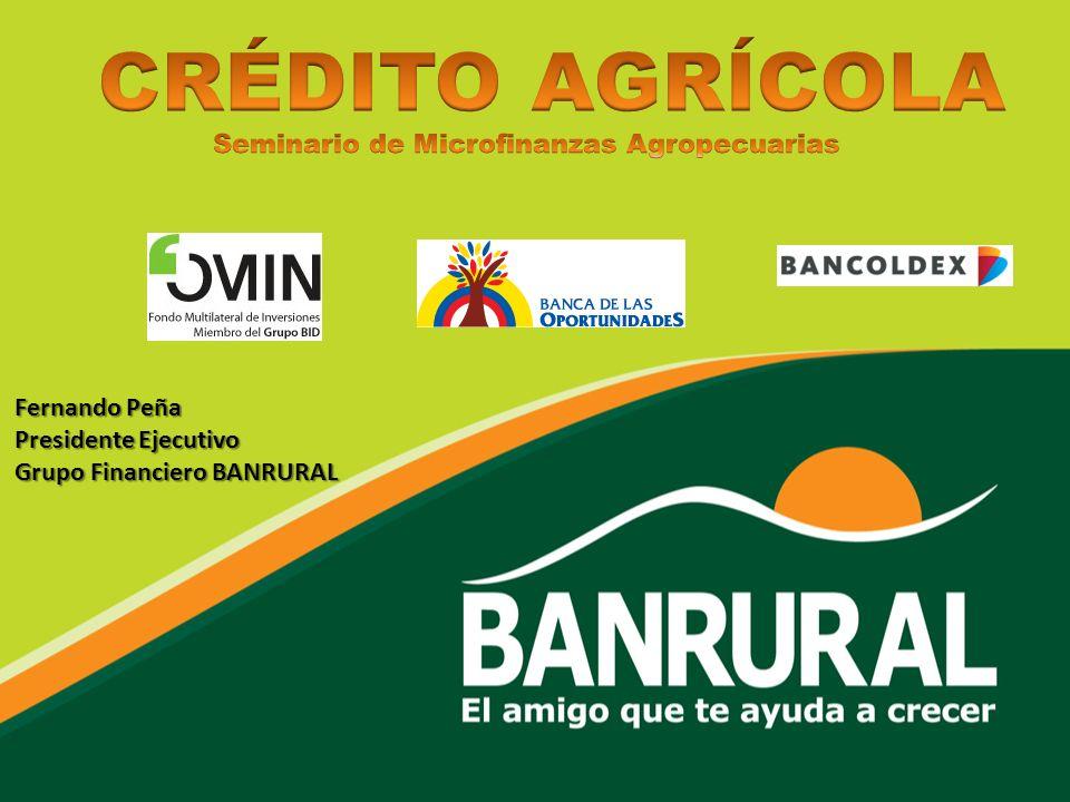 Fernando Peña Presidente Ejecutivo Grupo Financiero BANRURAL