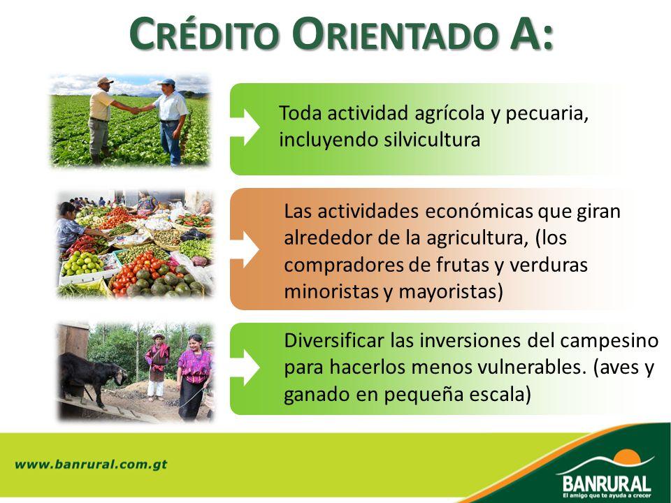 Toda actividad agrícola y pecuaria, incluyendo silvicultura Las actividades económicas que giran alrededor de la agricultura, (los compradores de frut