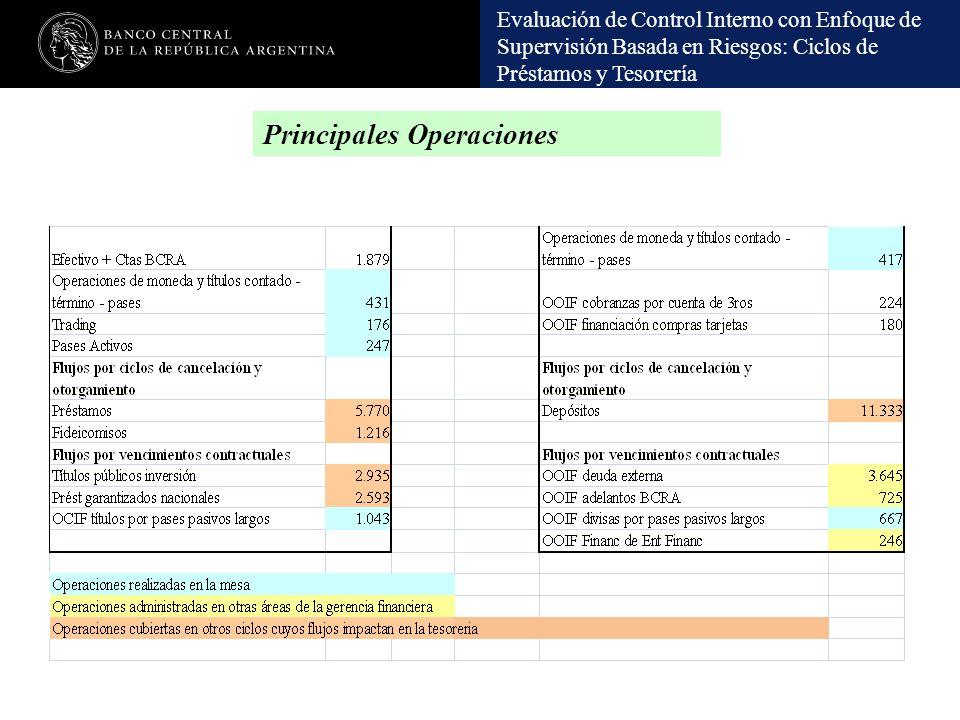 Evaluación de Control Interno con Enfoque de Supervisión Basada en Riesgos: Ciclos de Préstamos y Tesorería Principales Operaciones