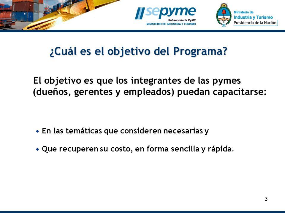 3 ¿Cuál es el objetivo del Programa? El objetivo es que los integrantes de las pymes (dueños, gerentes y empleados) puedan capacitarse: En las temátic