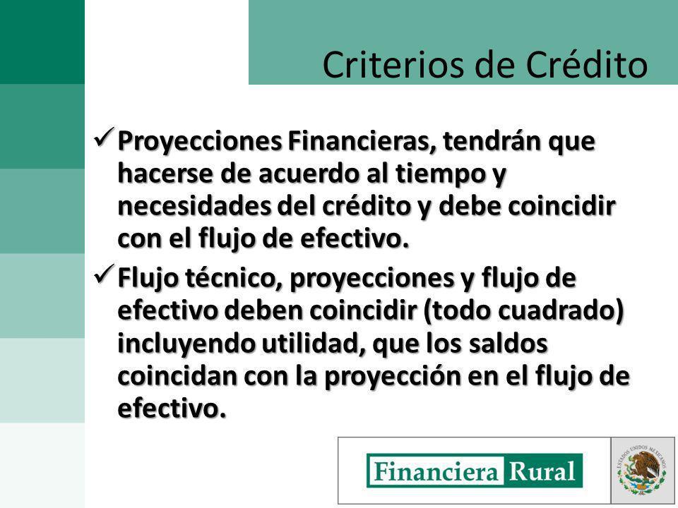 Proyecciones Financieras, tendrán que hacerse de acuerdo al tiempo y necesidades del crédito y debe coincidir con el flujo de efectivo.