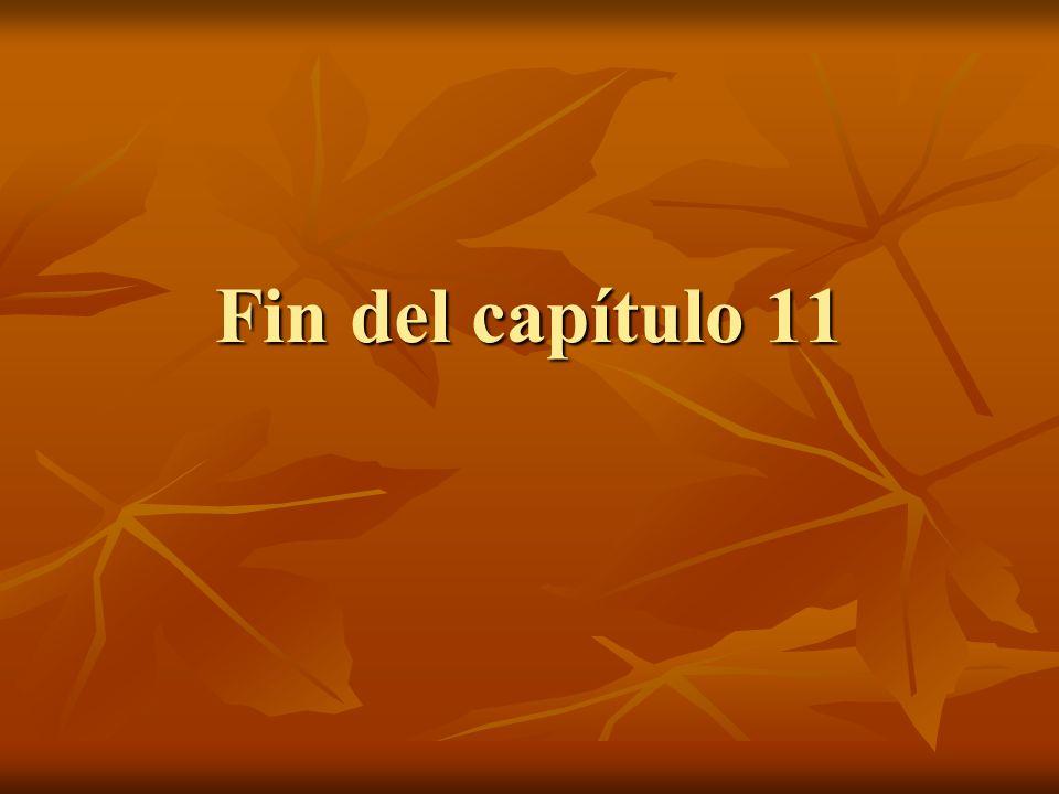 Fin del capítulo 11