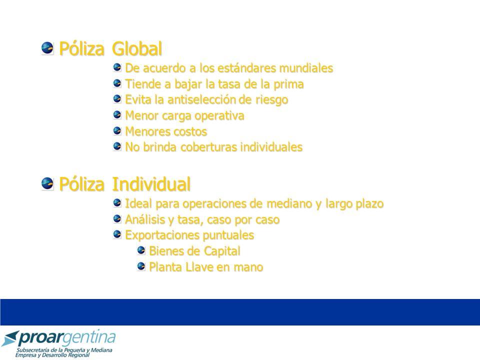 Póliza Global De acuerdo a los estándares mundiales Tiende a bajar la tasa de la prima Evita la antiselección de riesgo Menor carga operativa Menores