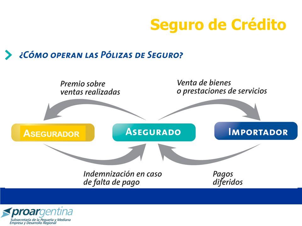 Seguro de Crédito A SEGURADOR