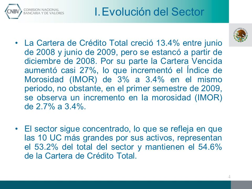 La Cartera de Crédito Total creció 13.4% entre junio de 2008 y junio de 2009, pero se estancó a partir de diciembre de 2008.