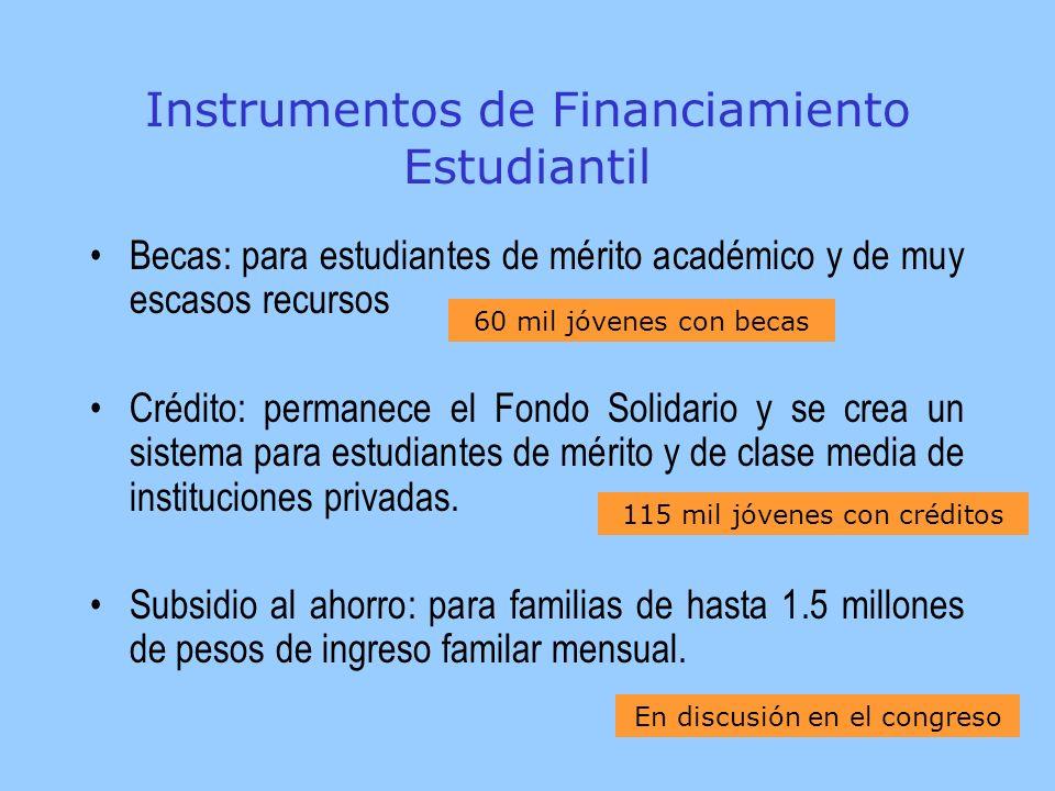 Instrumentos de Financiamiento Estudiantil Becas: para estudiantes de mérito académico y de muy escasos recursos Crédito: permanece el Fondo Solidario y se crea un sistema para estudiantes de mérito y de clase media de instituciones privadas.