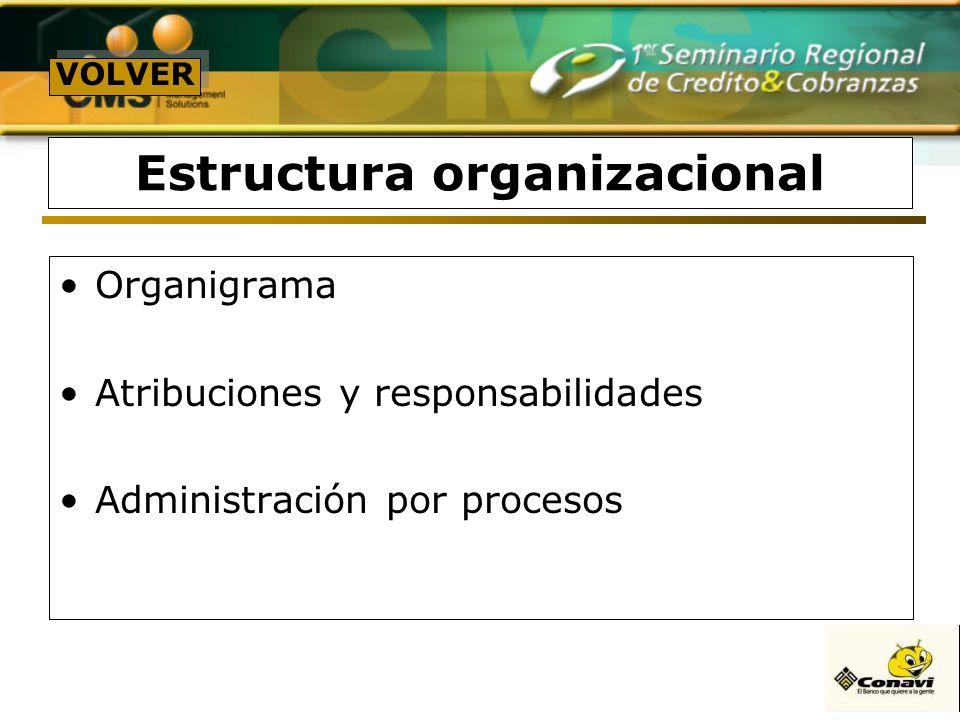 Estructura organizacional Organigrama Atribuciones y responsabilidades Administración por procesos VOLVER